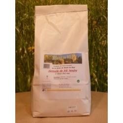 Semoule de blé tendre en sac de 2kg