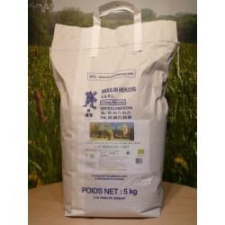 Farine 5 céréales bio en sac de 5kg